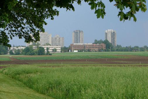 Peridot-Gemstone-Ottawa-Experimental-Farm-View